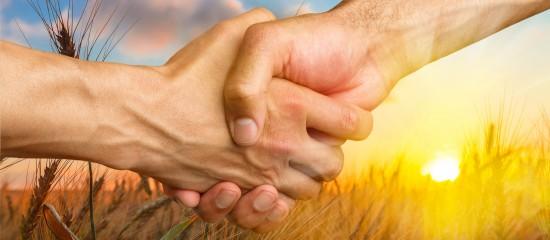 Aide à la transmission de l'exploitation agricole: chose promise, chose due!
